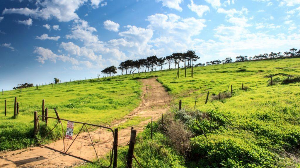 gate-pasture-unsplash