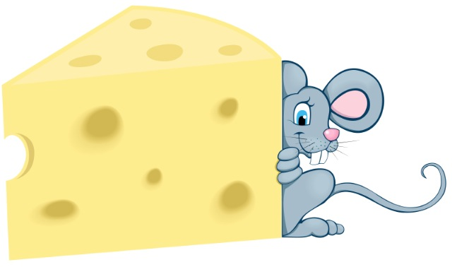 Age Only Counts If You Are A Cheese