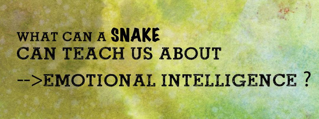 Teaching Emotional Intelligence Like a Snake Charmer