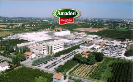 在Amadori上提高管理,参与和表现